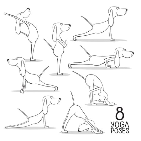 64936458 - cartoon dogs show 8 yoga poses.